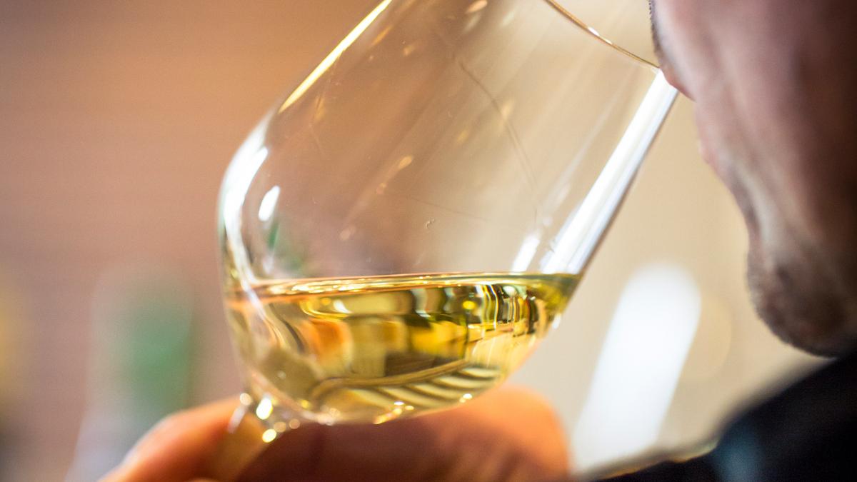 Wein! Tonnerrois Chablis Escales en Bourgogne Office